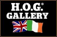 HOG Gallery